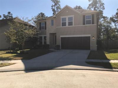 Humble Single Family Home For Sale: 7406 Lynnbrook Falls Lane
