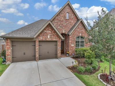 Pearland Single Family Home For Sale: 3609 Cibolo Court