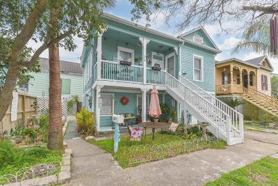 Galveston Multi Family Home For Sale: 1017 12th Street