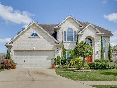 Houston Single Family Home For Sale: 10311 Orange Brook Court