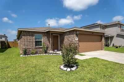 Fort Bend County Single Family Home For Sale: 910 Salado Slough Lane