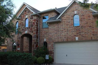 Katy Single Family Home For Sale: 3514 Canyon Pass Drive