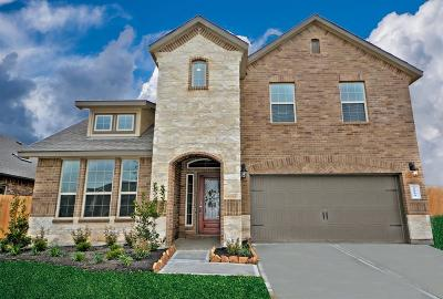 Pearland Single Family Home For Sale: 3712 Lockheed Street