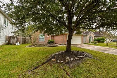 Spring Single Family Home For Sale: 22314 E Daniel Oak Circle