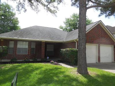 Galveston County, Harris County Single Family Home For Sale: 3230 Autumn Bridge Lane