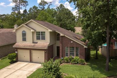 The Woodlands Single Family Home For Sale: 146 N Willow Point Circle