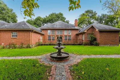 Sugar Land Single Family Home For Sale: 15701 Oleta Lane