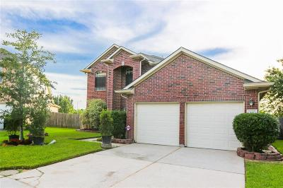 Pearland Single Family Home For Sale: 3122 Glen Cullen Lane