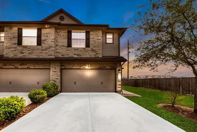 Houston Single Family Home For Sale: 2702 Maybrook Hollow Lane
