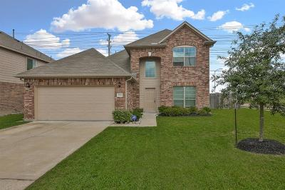 Katy Single Family Home For Sale: 2502 Seahorse Bend Drive