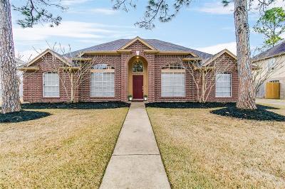 Sugar Land Single Family Home For Sale: 14206 Ragus Lake Drive