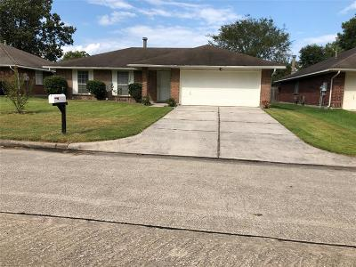 Houston Single Family Home For Sale: 2311 Pine Cone Drive
