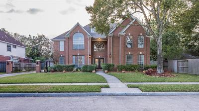 Houston Single Family Home For Sale: 11810 Park Shadows Trail