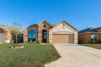 Tomball Single Family Home For Sale: 10111 Red Tamarack Lane