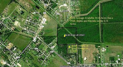 Alvin TX Residential Lots & Land For Sale: $864,224