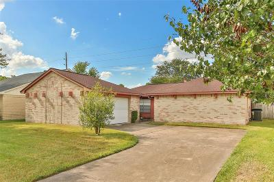 Houston Single Family Home For Sale: 13330 Oak Ledge Drive