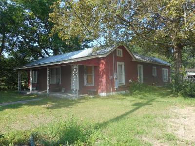 Shepherd Single Family Home For Sale: 211 Spring Avenue