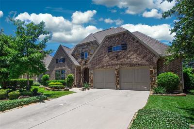 Tomball Single Family Home For Sale: 93 Sundown Ridge Place