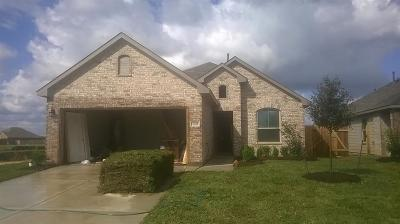 Texas City Single Family Home For Sale: 3411 Hollow Mist Drive
