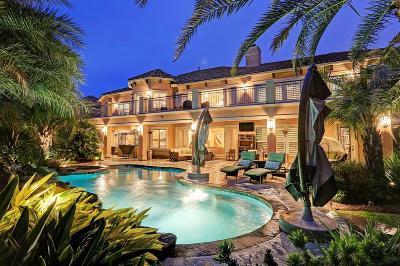 Houston Single Family Home For Sale: 14331 Belle River Lane