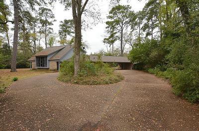 Houston Single Family Home For Sale: 13 W Shady Lane