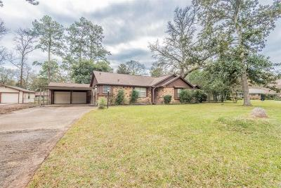 Tomball Single Family Home For Sale: 14143 Limerick Lane