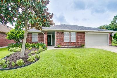 Friendswood Single Family Home For Sale: 15826 Heritage Falls Drive