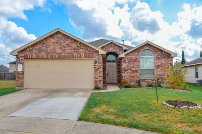 Katy Single Family Home For Sale: 5534 Floral Valley Lane