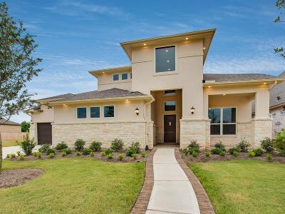 Sugar Land Single Family Home For Sale: 14 Coronal Way