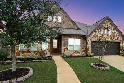 Riverstone Single Family Home For Sale: 4603 Stoney Ridge Court