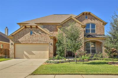 Tomball Single Family Home For Sale: 9602 Brannok Lane
