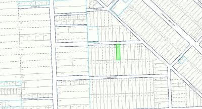 Houston Residential Lots & Land For Sale: 847 Rachel Street