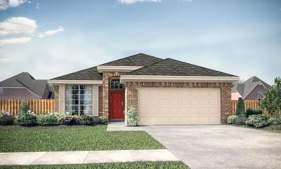 Houston Single Family Home For Sale: 12323 King Henry Drive