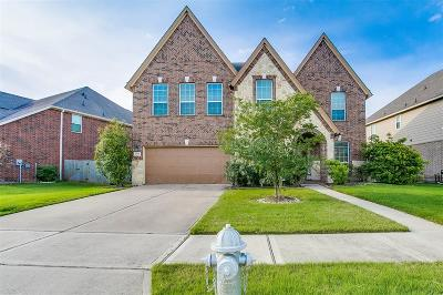 Sugar Land Single Family Home For Sale: 4615 Auburn Brook Lane Lane