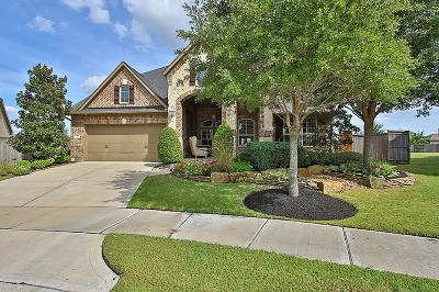 Katy Single Family Home For Sale: 28302 Rollingwood North Loop