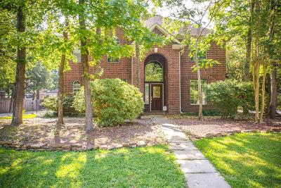 Spring Single Family Home For Sale: 155 N Downy Willow Circle