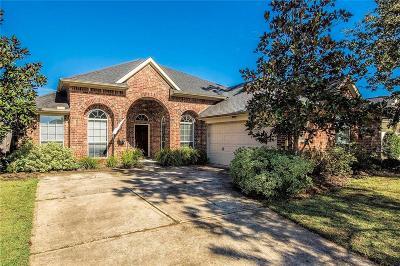 Houston Single Family Home For Sale: 13815 Eden Manor Lane