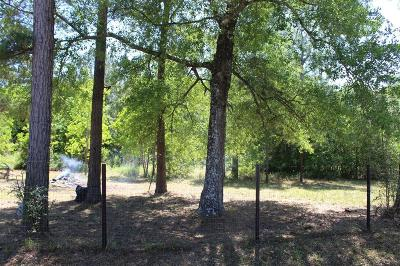 Conroe Residential Lots & Land For Sale: 16698 Springfield Drive