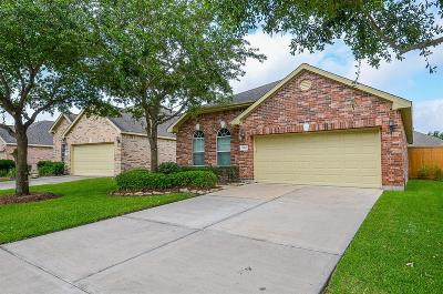 Katy Single Family Home For Sale: 5214 Rainfield Court