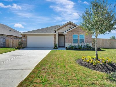 Rosenberg Single Family Home For Sale: 5818 Golden Peak Lane