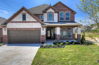 Porter Single Family Home For Sale: 21687 Lexor Drive