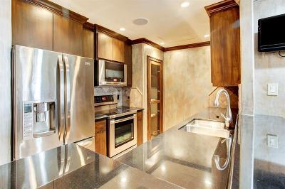 Houston Condo/Townhouse For Sale: 1311 Antoine Drive #236