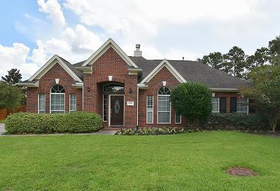 Tomball Single Family Home For Sale: 9202 Indian Creek Falls