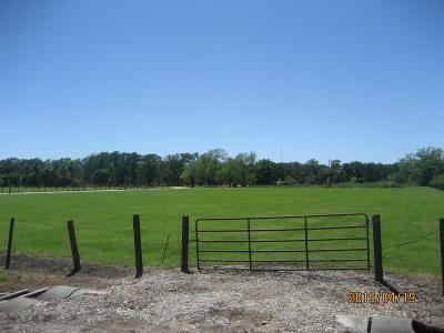 Fort Bend County Country Home/Acreage For Sale: 1325 Fm 723