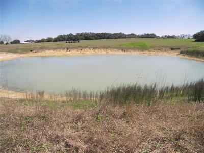 Schulenburg TX Farm & Ranch For Sale: $295,000