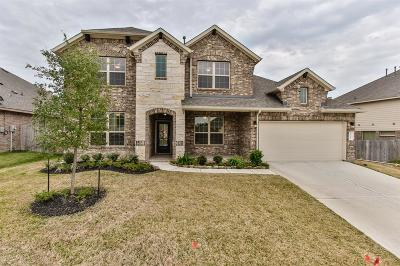 Conroe Single Family Home For Sale: 12222 Emerald Mist Lane