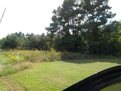 Tomball Residential Lots & Land For Sale: 22011 Hufsmith Kohrville Road