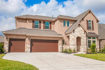 Tomball Single Family Home For Sale: 18723 Tamer View Court