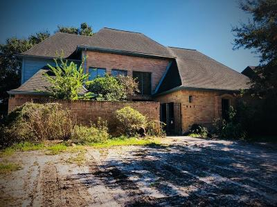 Houston Single Family Home For Sale: 907 Ivy Wall Drive