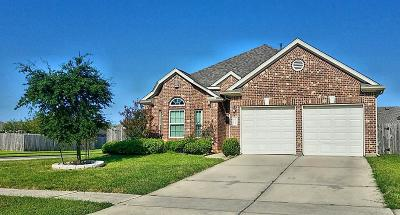 Tomball Single Family Home For Sale: 20231 Yosemite Falls Drive